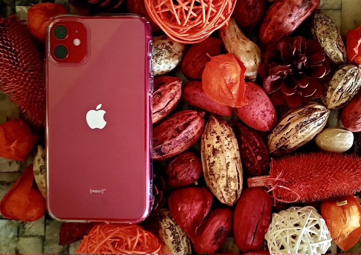 Apple iPhone 11 | Foto © Helmut Hackl