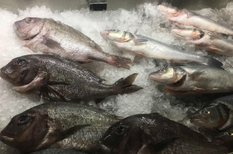 Fisch - Kulinarik auf Malta - Foto © Helmut Hackl
